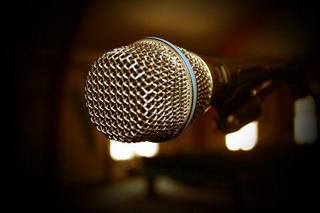 Микрофон. Фотография с сайта vibirai.ru